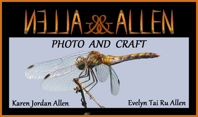 Allen & Allen Photo and Craft